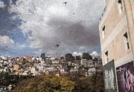 Hàng triệu con châu chấu bay giữa đường làm giao thông hỗn loạn