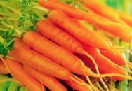 Thực phẩm chống ô nhiễm trong cơ thể