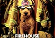 Lịch chiếu phim các rạp từ 17 đến 23/8: Rex, chú chó siêu quậy