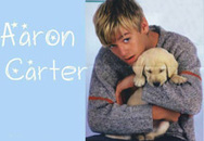 Aaron Carter vào tù vì tàng trữ ma túy