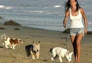 Ảnh Jennifer Aniston cùng cún cưng