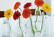 Lọ cắm hoa độc đáo