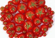 Gấc và cà chua tốt cho sức khỏe