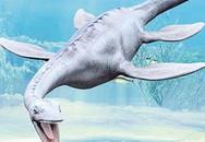 Quanh chuyện thủy quái Loch Ness xuất hiện trên Google Earth?