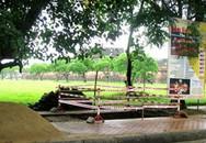 Xây nhà vệ sinh trái phép trong Hoàng thành Huế