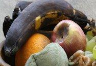 7 nguy cơ với sức khỏe từ tủ lạnh