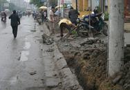 Lại hối hả... đào đường