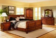 Những điều không nên khi trang trí cây cảnh phòng ngủ