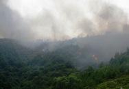 Hàng loạt vụ cháy rừng vì nắng nóng