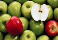 Hoa quả trong phong thủy