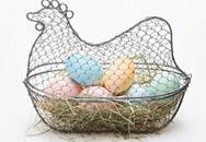 Bà bầu nên ăn trứng gà thế nào cho hiệu quả?
