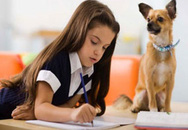 13 cách để con tự giác làm bài tập về nhà