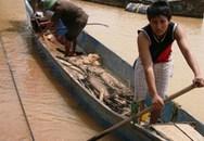 Chèo thuyền cứu hơn 350 người trong đêm lũ