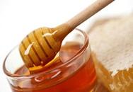 Mật ong - Món quà vô giá từ thiên nhiên