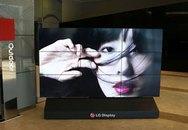 TV LCD viền mỏng nhất thế giới 1,5 mm