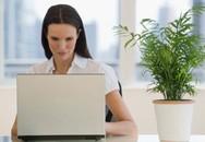 Văn phòng càng kín càng dễ mắc bệnh