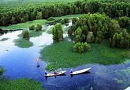 Độc đáo du lịch sinh thái, văn hóa ở Cà Mau