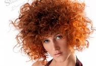 Màu hoa trên tóc – Một góc xuân ngời