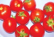 Cà chua chống máu vón cục