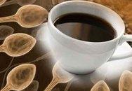 """Cà phê có lợi cho """"tinh binh"""""""