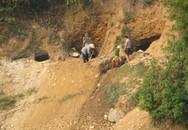 Sập hầm vàng, 5 người chết
