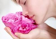 Làm đẹp da bằng hoa hồng