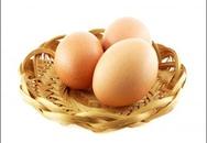 Bảo quản trứng đúng cách