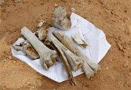 Phát hiện 1 mộ chôn... 1270 thi thể