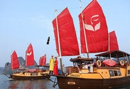 Life Resorts Hạ Long khai trương đội du thuyền đẳng cấp
