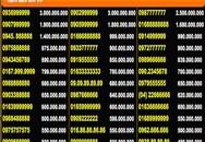 Những chiêu thổi giá SIM rác thành tiền tỷ