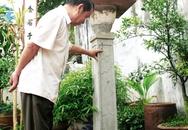 Ngắm cây hương đá cổ 300 năm