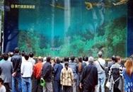 Bể cá mập 33 tấn vỡ tung, 15 người bị thương