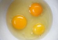 Tử vong do ăn 28 quả trứng gà sống