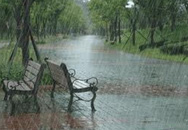 Không khí lạnh tăng cường, gây mưa rào ở Bắc Bộ