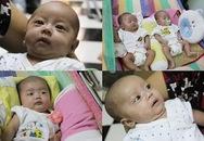 Gặp lại gia đình sinh 5 đầu tiên tại Việt Nam