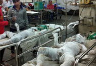 Kinh hoàng 3 mẹ con như đuốc sống vì bình gas phát nổ