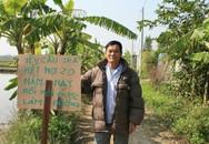 Hải Phòng: Một nông dân yêu cầu chính quyền phường trả nợ 13 tấn thóc