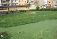 Hà Nội: Chi gần 60 tỷ đồng cho khu vực hồ Ba Giang