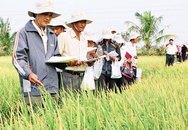 Báo cáo phát triển con người: Hướng tới sự phát triển bền vững