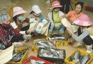 Chợ Lách, Bến Tre: 100% cộng tác viên tiếp thị xã hội phương tiện tránh thai