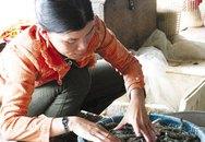 Bảo quản hải sản bằng urê, chất javel: Giảm trí nhớ, hại gan thận