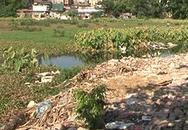 Hà Nội: Hồ Linh Quang bị ô nhiễm nghiêm trọng