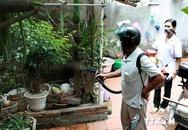 Hà Nội: Khống chế 8 ổ dịch sốt xuất huyết