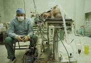 Tâm sự về những nỗi nhọc nhằn mà báo chí không hiểu của một bác sĩ hồi sức cấp cứu