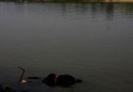 Xác chết được phát hiện trên sông Hồng không phải vụ Cát Tường