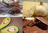 10 thực phẩm giúp đánh bay stress