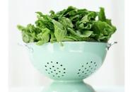 Những loại thực phẩm nào giúp bổ não?