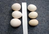 Nhận biết trứng gà ta thật