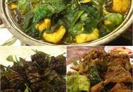 Ăn lươn đúng chất xứ Nghệ ở Hà Nội