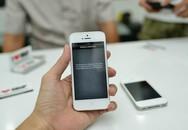 iPhone 5 tiếp tục giảm giá